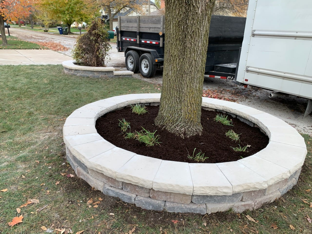 tree with paver circle aztech 05 17 21
